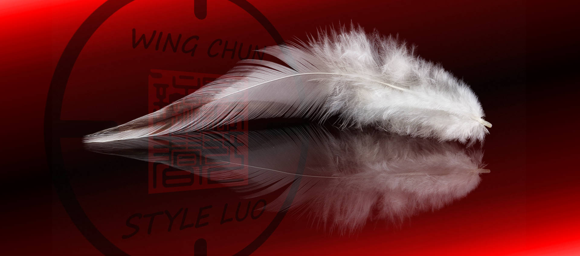 Wallpaper Wing Chun Luo - Feather